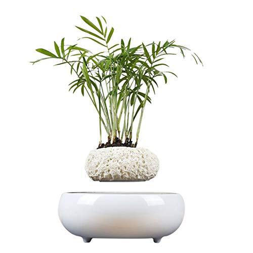 URAURORA Magnetische Levitatie Plant Pot, Drijvende Bloempot Creatieve Geschenken Magnetisch Opgeschort voor Home Office Bureau Decoratie Kid Vrouw Verjaardagscadeau