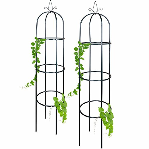 Anaterra Rosenturm, Rankhilfe für Pflanzen, Rankgerüst, Rankturm aus Metall, 40 x 40 x 200 cm, 1/2er Set (2 Stück)