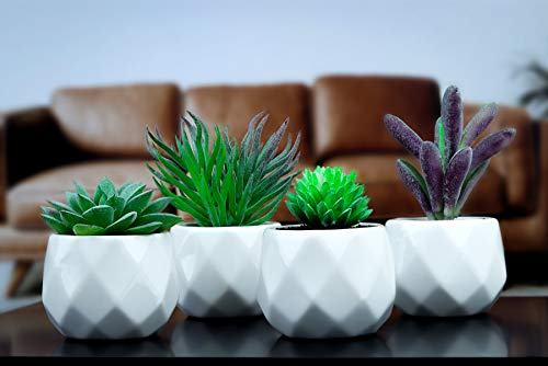 Evelyne Artificial Plant 4pc Set, Fake Succulents in White Ceramic Pots, Ideal Bathroom Plants, Indoor Faux Succulent Plants