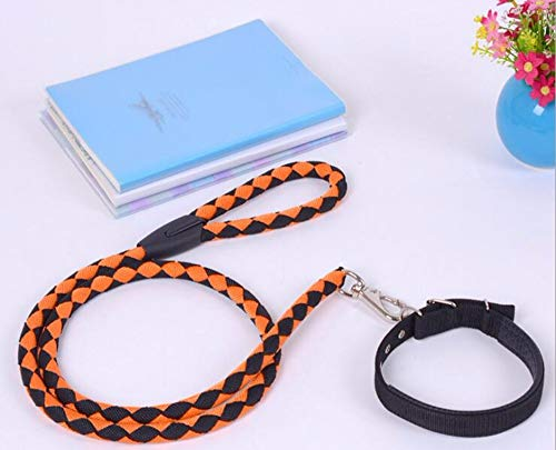DLFALG Pet Forniture nylon gevlochten hond in de buitenlucht met trekkoord twee serie honden, sterk, duurzaam, oranje, maat XL