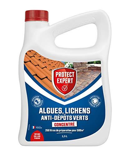 PROTECT EXPERT DIMA25N Algues   Lichens   Anti-Dépôt Vert   Concentré 2,5L pour 250L de Solution   500m²   Toiture   Terrasse   Dalles   Piscine, Efficace