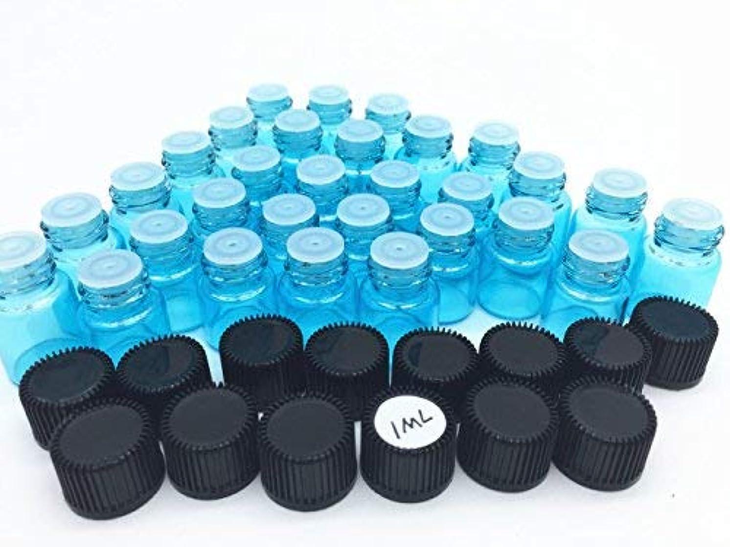 精度リーチ重要な役割を果たす、中心的な手段となるElufly 100pc 1ML/2ML Sky Blue Glass Vials 6 Parts Essential Oil Reagent Bottles (100pc 1ML) [並行輸入品]