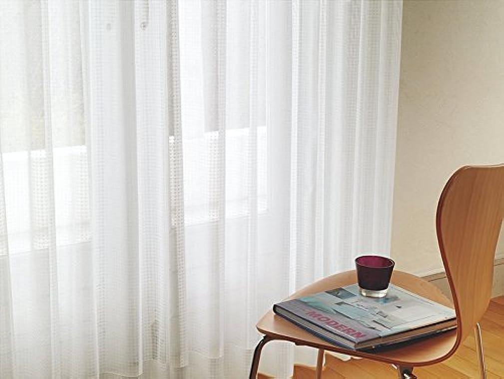 化粧混沌猟犬東リ 透け感の違いで表現したデザイン カーテン2.5倍ヒダ KSA60490 幅:100cm ×丈:190cm (2枚組)オーダーカーテン