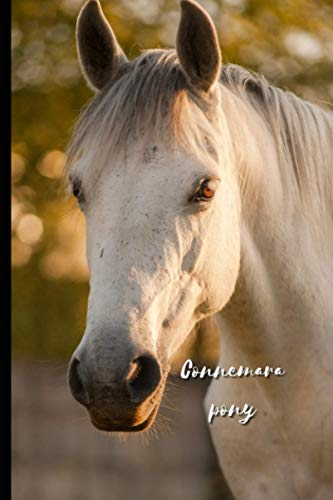 Connemara pony: Journal and Notebook - Composition Size (6'x9') With 120 Lined Pages, Perfect for Journal, Doodling, Sketching and Notes