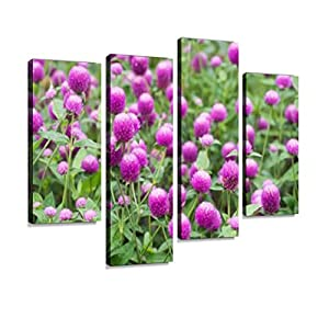gomphrena Flower Blooming in The Garden Canvas Wall Art Hanging Paintings Modern Artwork Abstract Picture Prints Home Decoration Gift Unique Designed Framed 4 Panel