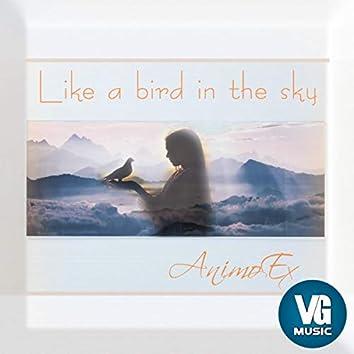 Like a Bird in the Sky