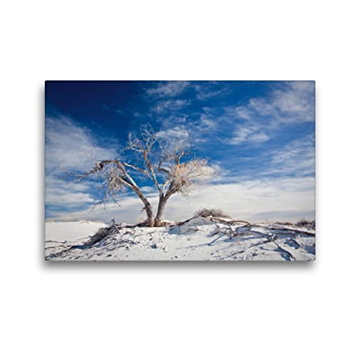 Premium Textil-Leinwand 45 x 30 cm Quer-Format White Sands National Monument, New Mexico | Wandbild, HD-Bild auf Keilrahmen, Fertigbild auf hochwertigem Vlies, Leinwanddruck von ralf kaiser