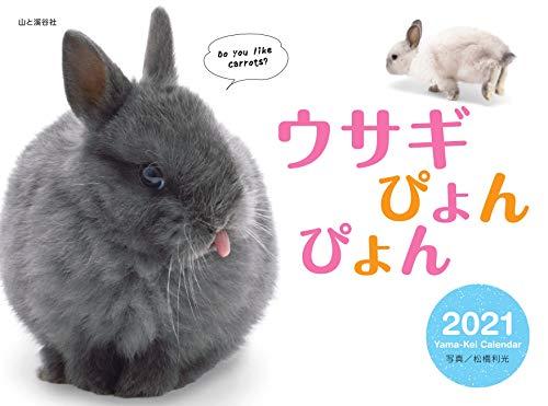 カレンダー2021 ウサギぴょんぴょん(月めくり・壁掛け) (ヤマケイカレンダー2021)の詳細を見る