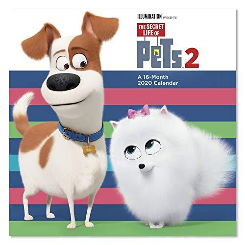 2020 The Secret Life of Pets 2 Wall Calendar (DDW3032820)