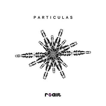 Particulas