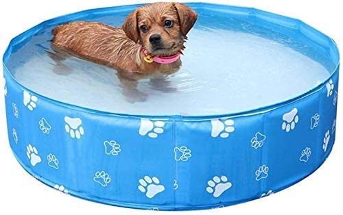 WCY Perro Piscina, Plegable portátil for Mascotas Piscina Impermeable Animal doméstico del Gato Baño Bañera (Color: B) (Color: A) yqaae (Color : B)