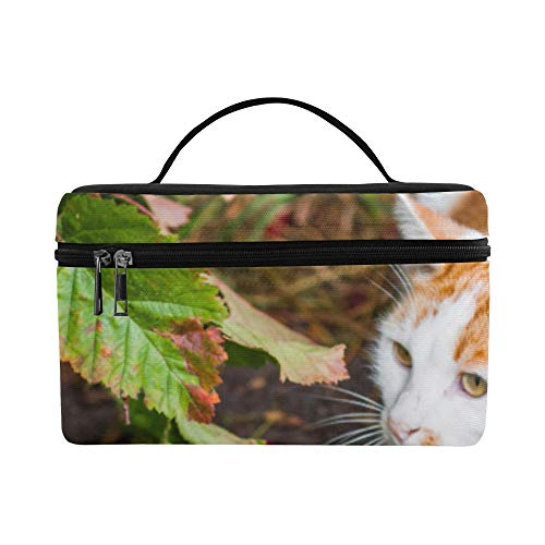 Cat Is Sitting In Red Berries And Autumn Leaves Fo Pattern Lunch Box Tote Bag Lunch Holder Insulated Lunch Cooler Bag For Women/men/picnic/boating/beach/fishing/school/work