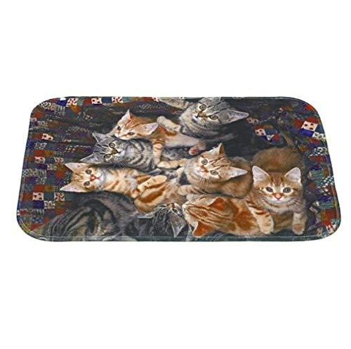 Cat Print Welcome Vloermatten Slaapkamer Hal Tapijt Antislip Zachte Deurmat voor Woonkamer Keuken Tapetes-EEN_50 * 80