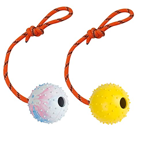 Billion times 2 Pack Dog Ball, K9 Ball, Solid Rubber Ball on Rope for Reward, Fetch, Play (7cm)