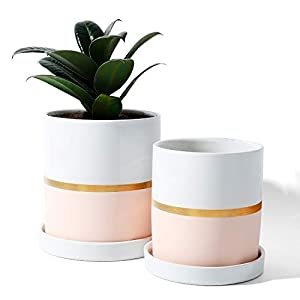 Silk Flower Arrangements POTEY 052003 Planter Pots Indoor - 4.9 & 3.9 Inch Modern Home Decor Cylinder Ceramic Flowerpot Bonsai Container with Drainage Holes&Saucer for Plants Flower Succulent(Plants NOT Included)