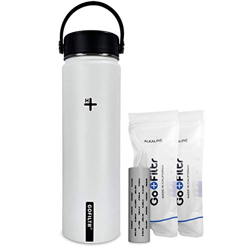 GOFILTR Kit de hidratación de botella de agua alcalina, 650 ml, botella de agua de acero inoxidable aislada al vacío + dos infusores minerales ionizados alcalinos originales (algodón)