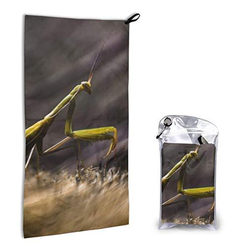 Toallas de Secado Rápido Imagen Mantis Toalla de Playa Súper Absorbente Toalla de Viaje Ligera para Acampar Senderismo Deportes 15.7 x 31.5 Pulgadas