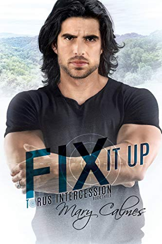 Fix It Up: Torus Intercession Book Three (English Edition)