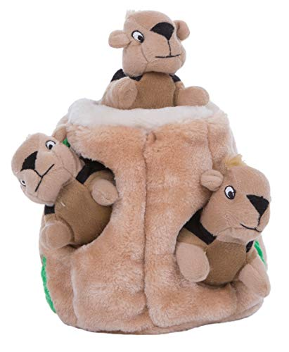 Outward Hound Hide-A-Squirrel Plush Squeaking Toys for Dogs