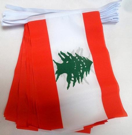 AZ FLAG FAHNENKETTE LIBANON 6 Meter mit 20 flaggen 21x14cm - LIBANESISCHE Girlande Flaggenkette 14 x 21 cm