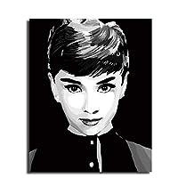 Diy 油絵,コーティング番号でコンプリートセット道具家の装飾壁 PIC 値ギフト(16x20inch/50.8x40.6cm)