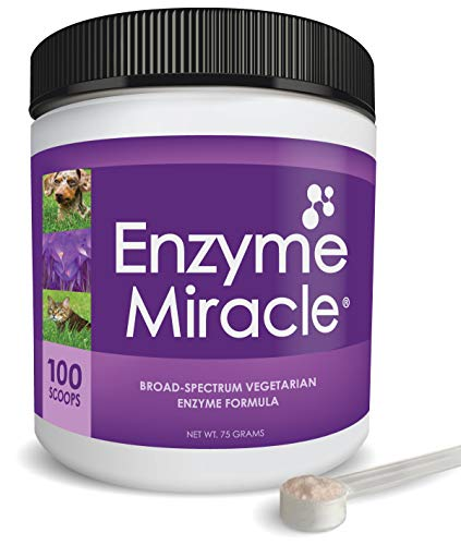 Top 10 best selling list for digestive enzyme supplements for cats