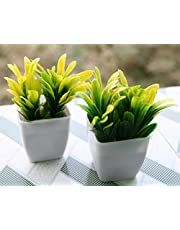 Love Art Set of 2 Cute Small Artificial Plants Bonsai Potted Plastic Faux Grass for Home, Garden and Office Decor-12 cm