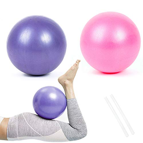 Pelota de Pilates de Yoga de 25 cm, 2 Pelotas de Ejercicio Pequeñas, Mini Pelota de Pilates Suave Antideslizante para Gimnasio, Yoga, Masaje y Pilates en Casa (Púrpura y Rosado)