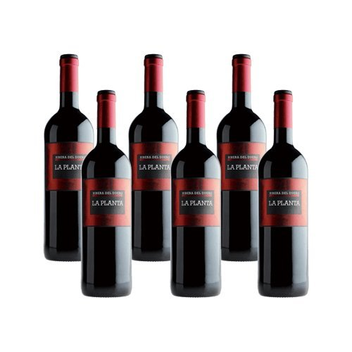 La Planta de Arzuaga Tinta Fina - Vino Tinto- 6 Botellas