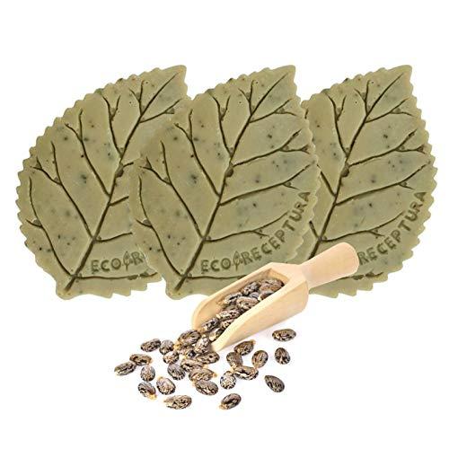 Natuurlijke zeep met ricinusolie, olijfolie, kokosnootolie, cacaoboter en sheaboter - Gezichts- en lichaamsverzorging op basis van natuurlijke actieve bestanddelen en bloemenextract (x3)