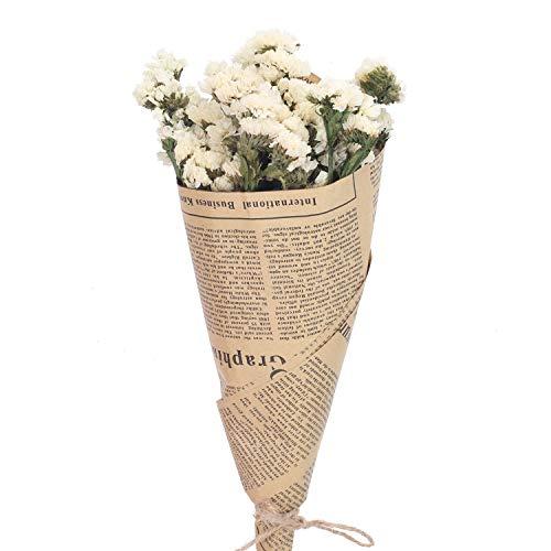 NAHUAA Flores Naturales Flores secas Flores secas Decoración para florero Decoración de Mesa Regalo de Bricolaje Decoración del hogar Hotel Fotografía Blanco