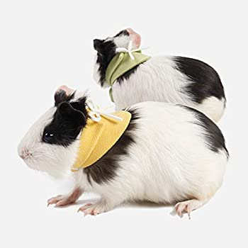 clothing for hamsters