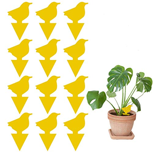 12 Pack Sticky Trap, Fruit Fly and Fungus Gnat Trap Killer Indoor and Outdoor, Protect The Plant, Non-Toxic and Odorless(Bird Shape)