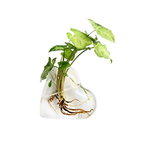 Mucjun Glasvase zum Aufhängen, herzförmig, zum Aufhängen, Blumenbehälter, Hochzeit, Heimdekoration, Terrarium