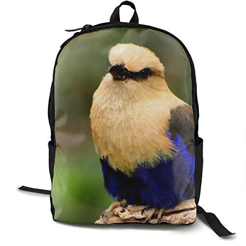 Unisex Rucksack, klassisch, Vogel-Farbe, ungewöhnlicher Zweig, lässiger Rucksack, Reisen, Camping, Outdoor, Laptop, Tagesrucksack