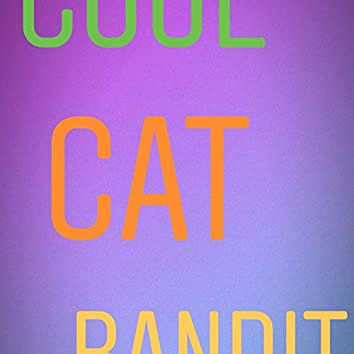 Cool Cat Bandit
