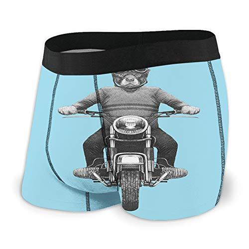 Calzoncillos tipo bóxer para hombre, raza de perro, motociclismo, aventura, scooter, gorro duro, calzoncillos tipo bóxer, ropa interior, transpirables, elásticos, calzoncillos deportivos XL