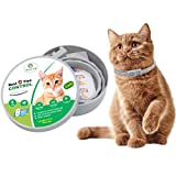 Cat Flea And Tick Prevention Review and Comparison