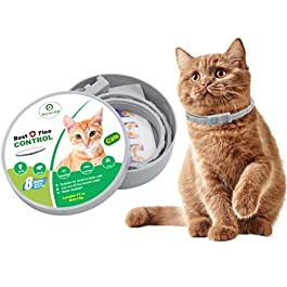 HOMIMP Cat Flea Collar 8 Months Protection – Flea Tick Treatment for Cats Kittens Puppies 33cm