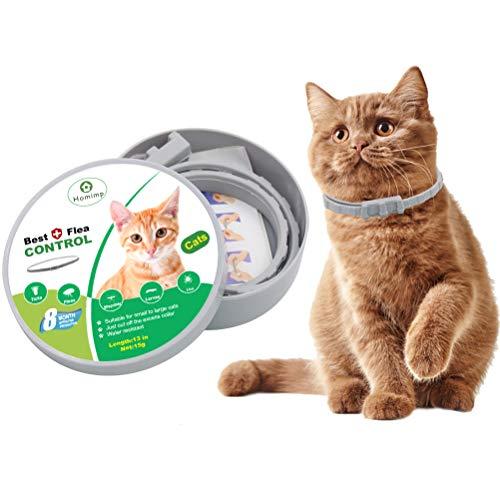 Homemp - Collare antipulci per gatti, 8 mesi, trattamento antipulci per gatti e cuccioli, da 33 cm.