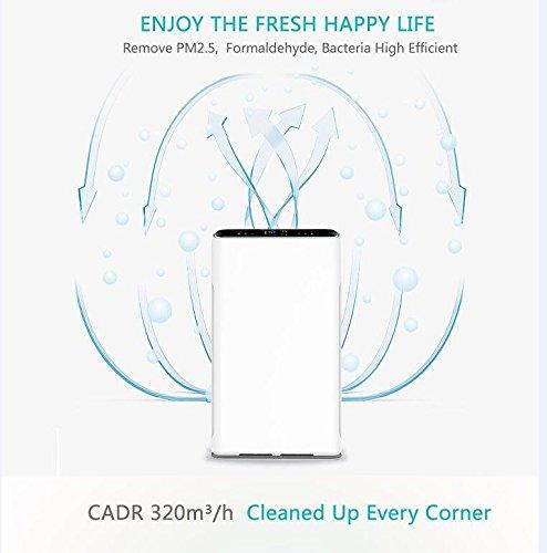 Deluxe13 Generador de Ozono Portátil | Purificador de Aire con ...