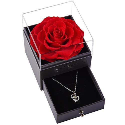 YQY Ewige Blütenrose, Halskette Ring Schmuckkasten handgefertigte konservierte Rose, für Immer Rose Geschenk für sie am Weihnachtsjubiläum und Valentinstag,Rot