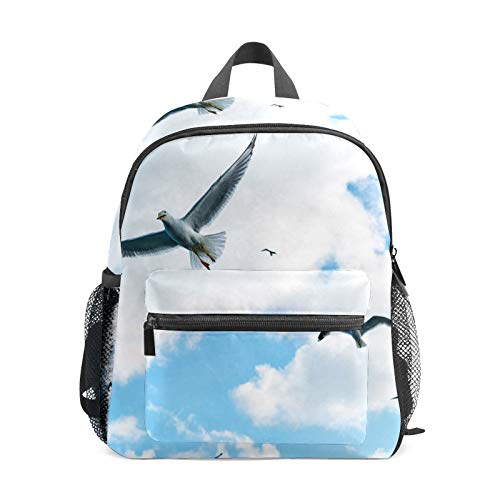 School Backpack for Kid Girls Boys,Student Bookbag Casual Daypack Travel Children Bag Organizer for Camping Hiking Gift Gulls Clouds