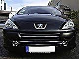 Luxyline Baguette de calandre chromée Peugeot 307 05-21 Peugeot 307 CC 05-21 Peugeot 307 SW 05-21