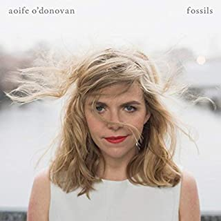 Fossils by Aoife O'Donovan (2013) Audio CD