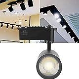 Crazystore LED-Schienenleuchte ersetzt Aluminium Store Office Home Scheinwerfer (schwarz 30W)