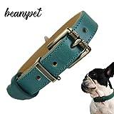 beanspet 犬 ベーシック 首輪 犬首輪 革 おしゃれ かわいい 本革 犬の首輪 いぬ くびわ 犬用品 (XS, グリーン)