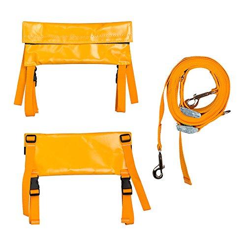 Buckingham 355B Buck Ladder Lock, Ladder Safety Restraint System, Nylon Web Straps, Ladder