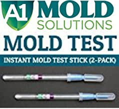 a1 mold solutions