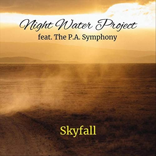 Night Water Project feat. The P.A. Symphony